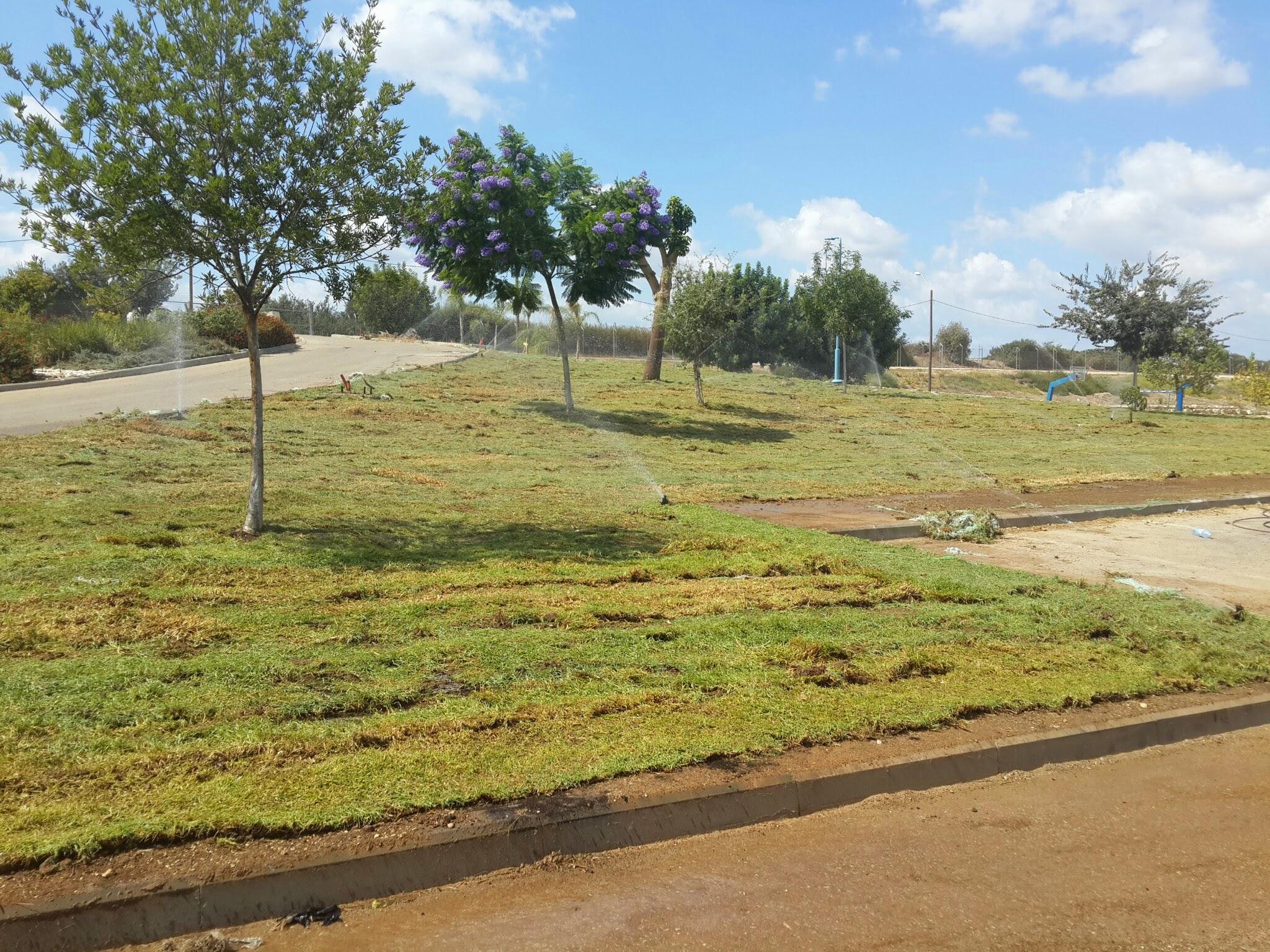 """דשא חדש בפארק """"אגדשא"""""""