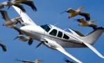 לא לשדה תעופה בעמק חפר
