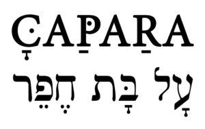 מסיבה ישראלית עם הפרויקט של רביבו